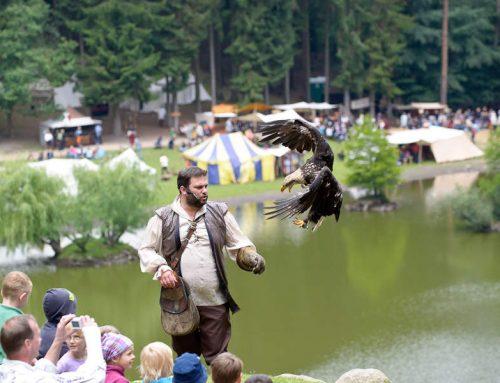 Mittelalter-Spektakel im Wildpark Schwarze Berge