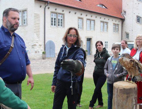 """""""Falkner für einen Tag"""" auf der Burg Brome"""