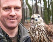 Falkner für einen Tag - Erlebnis im Wildpark Schwarze Berge mit Sakerfalken